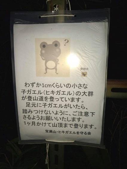 H29.6.18yoshida6.jpg