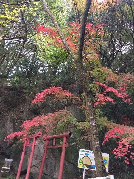 H30.11.20kamiyoshi1.jpg