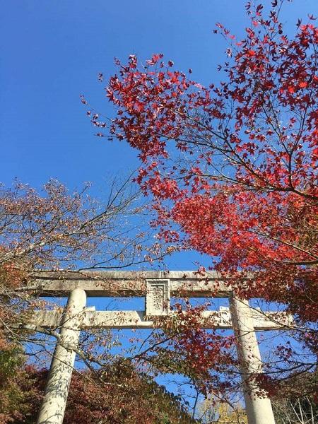 H30.11.7hashikawa3.jpg