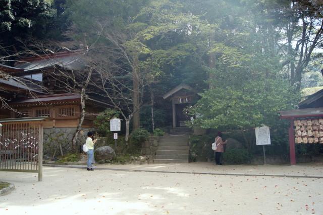 hizakurae1rino3.jpg